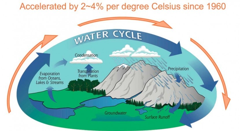 new study of ocean salinity finds substantial amplification of the global water cycle