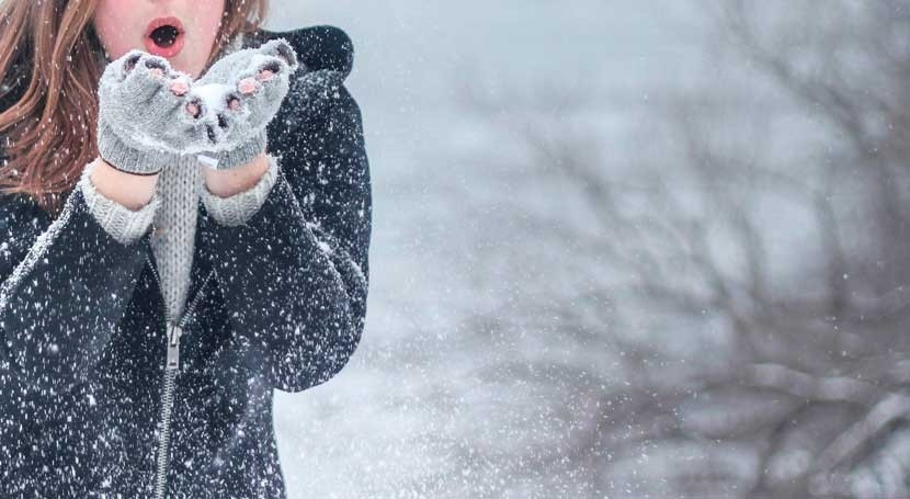 Winter is coming: 5 essential reads about snow and ice