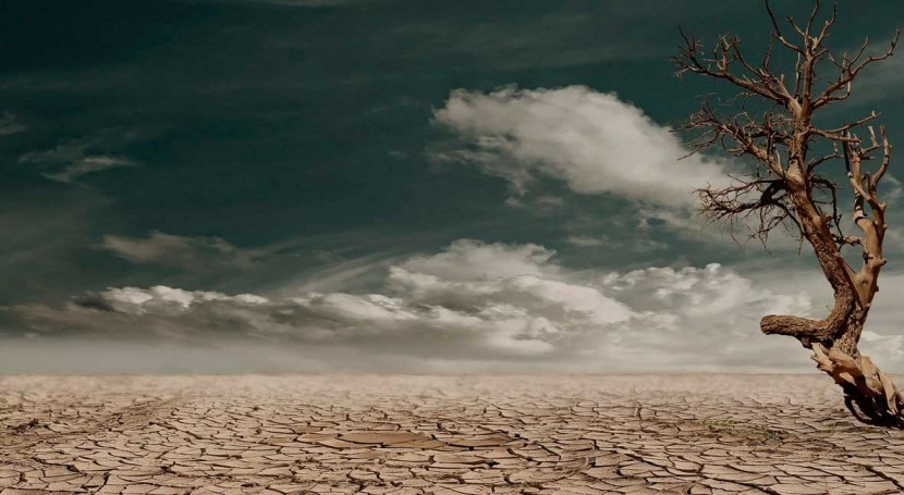 Climate-driven megadrought is emerging in Western U.S., says study