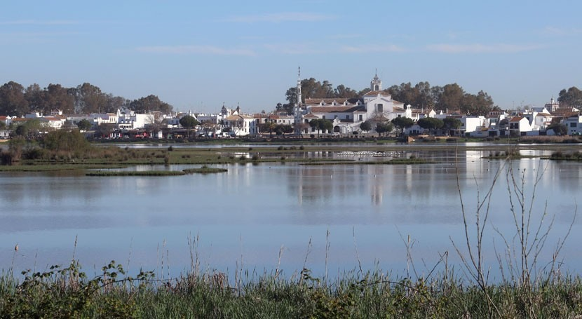 Report of the advisory mission to Doñana (Spain) published