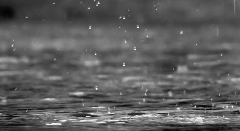 Biochar helps hold water, saves money