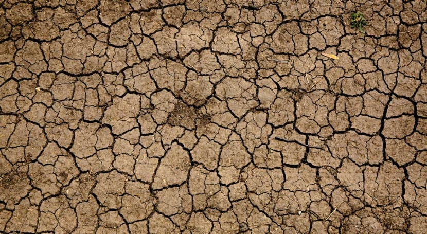 The cost of drought in Italy