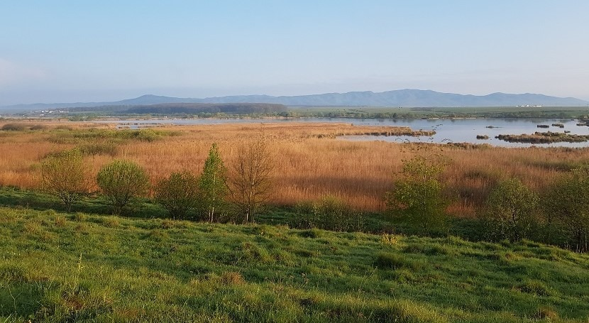 Romania extends protection of the Dumbravita-Rotbav Fishpond Complex