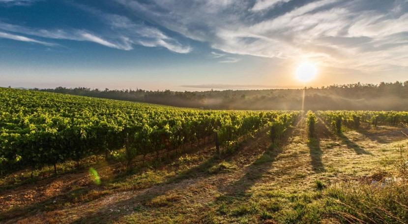 Washington State municipality puts cork in non-revenue water with Sensus
