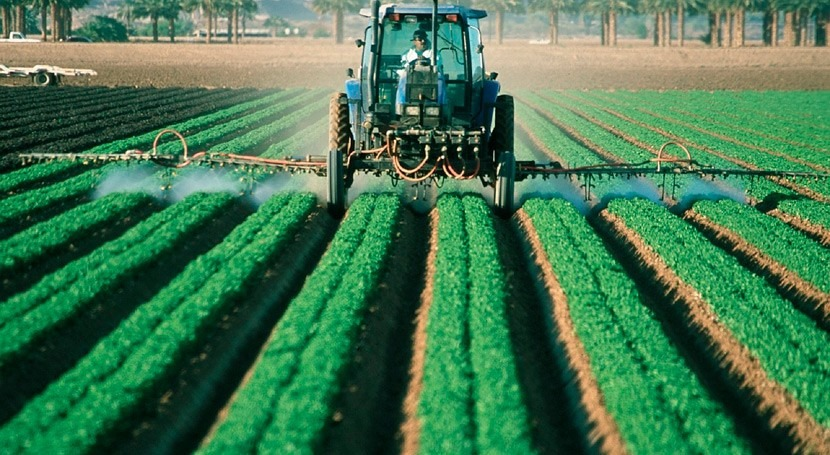 Water, the food chain and persistent pesticides