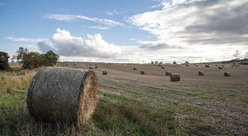 Climate change could drive British crop farming north and west