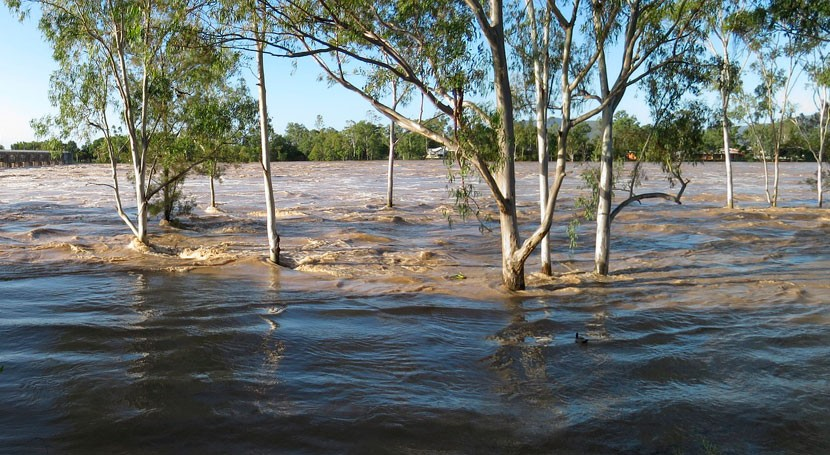 Floods may be nearly as important as droughts for future carbon accounting