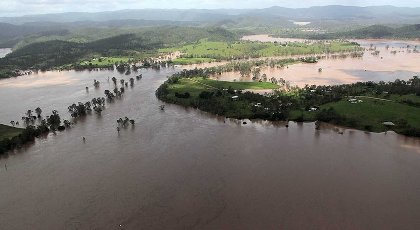Flood reveals trees are key to clean drinking water