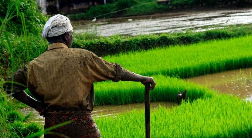 Birmingham-led research promises water boost for farmers in India