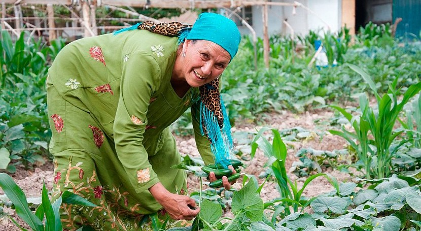 Innovations and smart water technologies key to food systems transformation in Central Asia