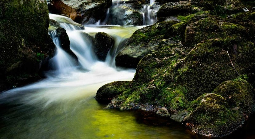 EU urges Ireland to ensure that water intended for human consumption is clean