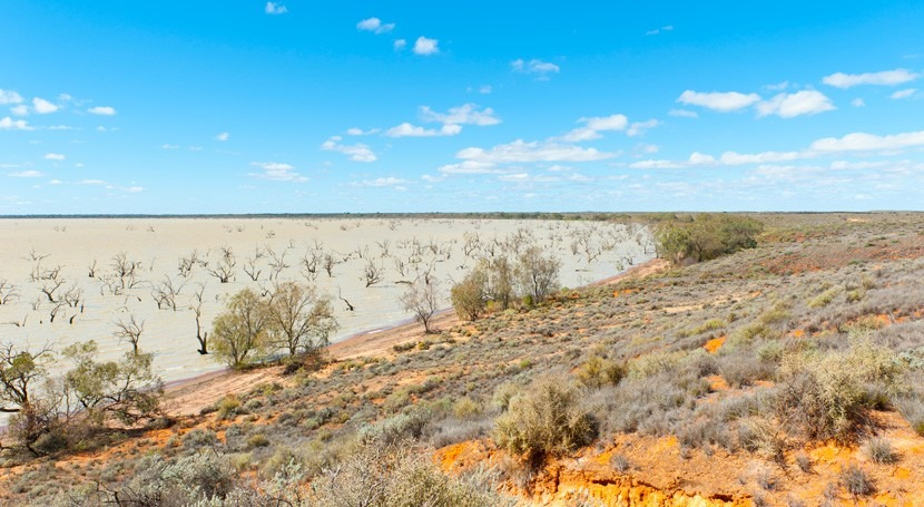 Drought and climate change are driving high water prices in the Murray-Darling Basin