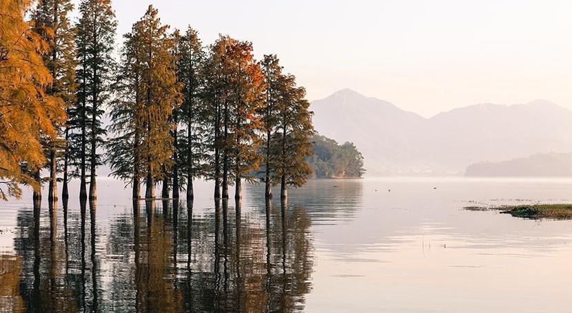 Companies worth $15 trillion revealed on CDP 2020 ' List' of environmental leaders