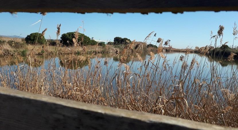 Research supports protestors' concerns about the future of Llobregat Delta