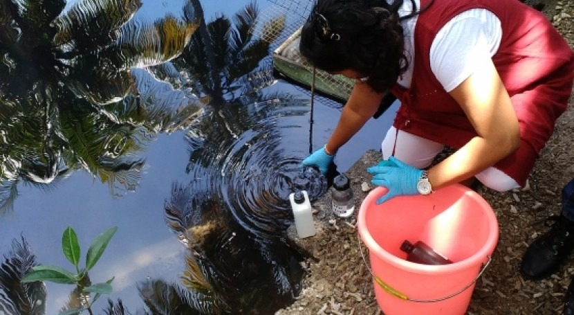 Isotopes help trace the origin of urban water pollution in Mauritius