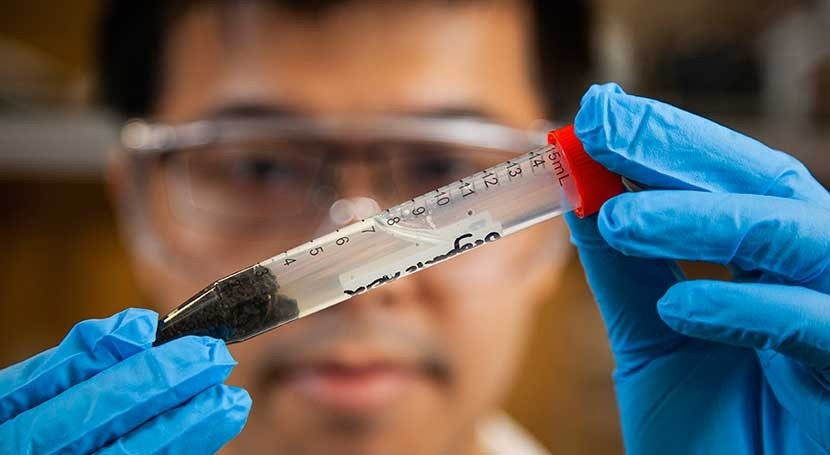 Microwave treatment is an inexpensive way to clean heavy metals from treated sewage