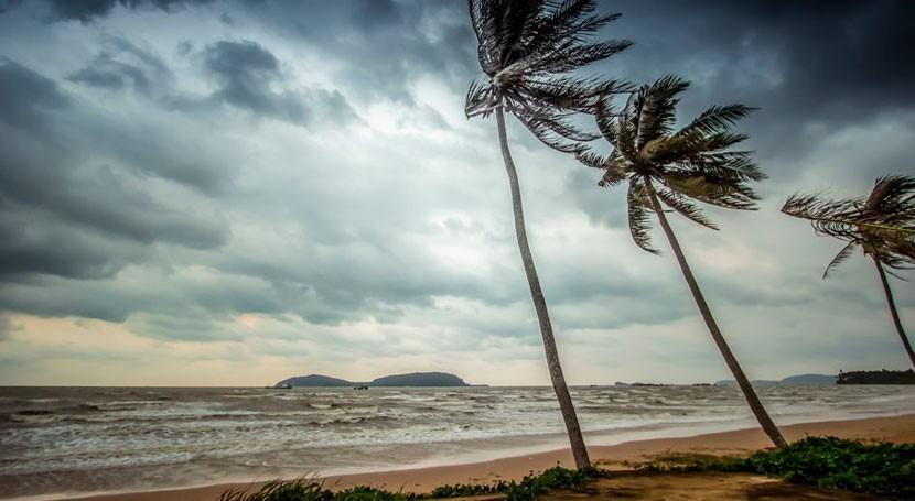 Ocean activity is key controller of summer monsoons