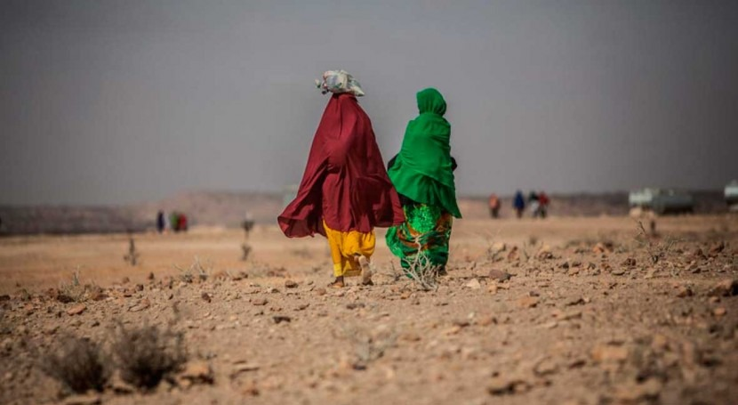 More than 52 million people across Africa going hungry as weather extremes hit the continent