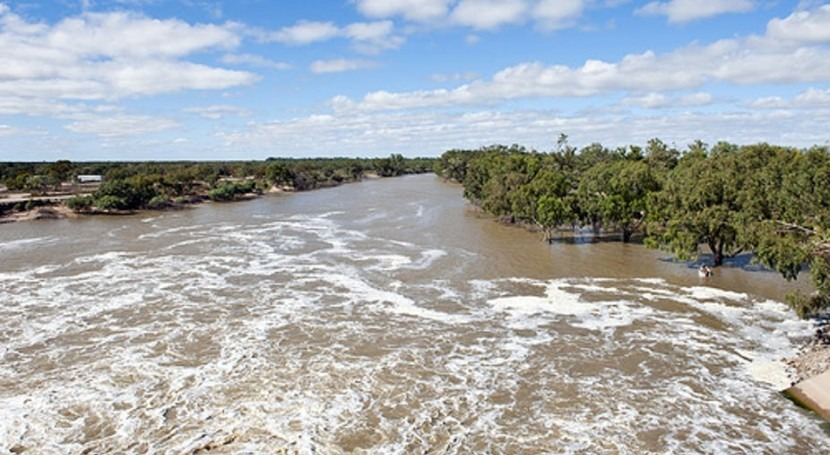 5 ways the government can clean up the Murray-Darling Basin Plan