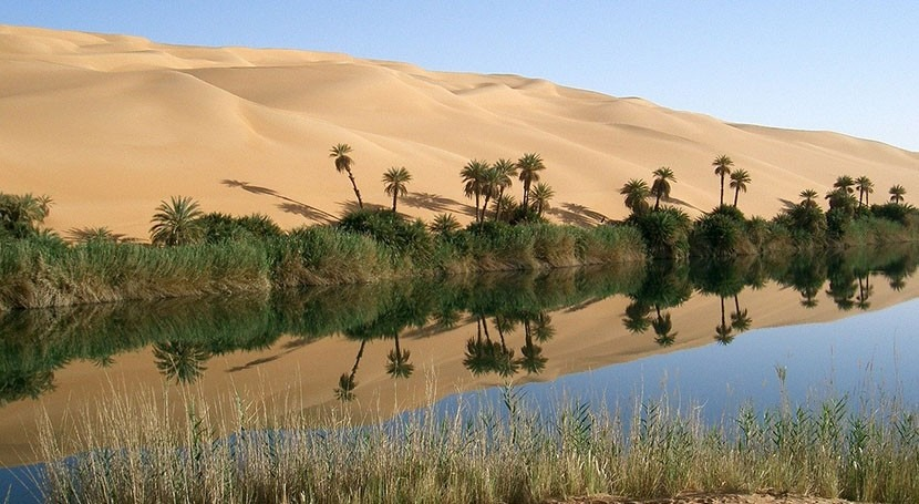 Paradox lost: wetlands can form in deserts, but we need to find and protect them