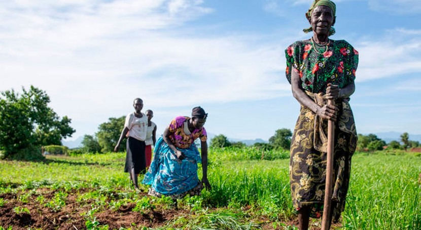 Protracted conflicts and adverse weather conditions exacerbate food needs