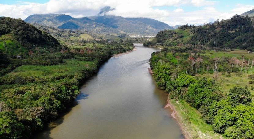 Microorganisms are the main emitters of carbon in Amazonian waters