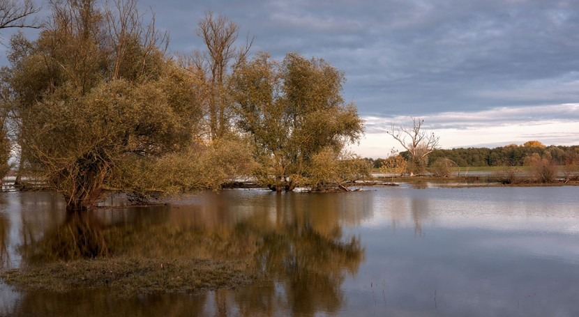 Why COVID-19 has left the UK especially vulnerable to flooding this winter