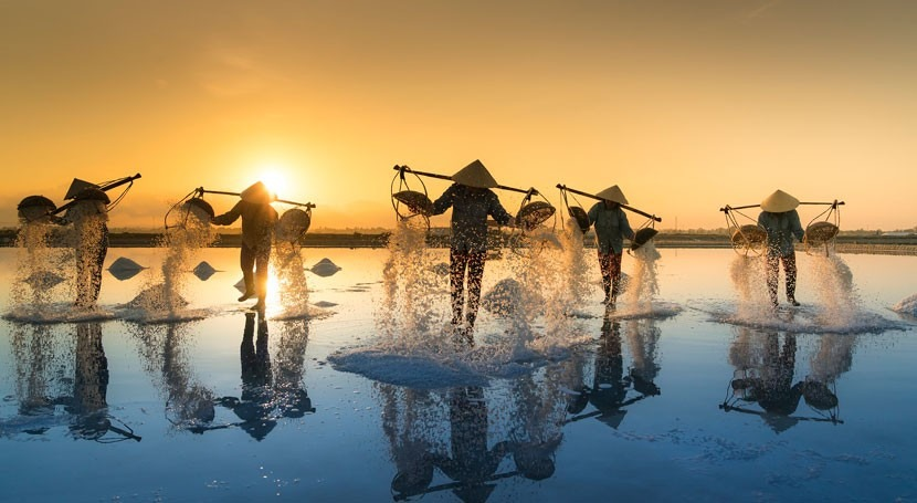 World Bank Group announces debarment of Vietnam Water and Environment Investment Corporation