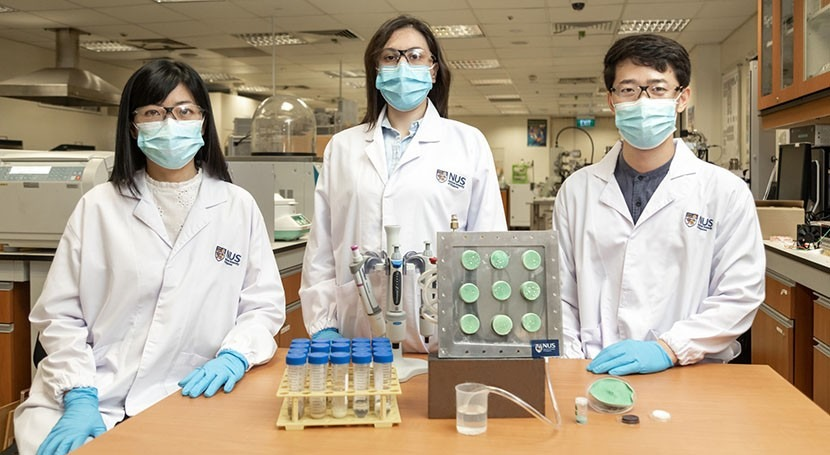 Engineers create 'smart' aerogel that turns air into drinking water