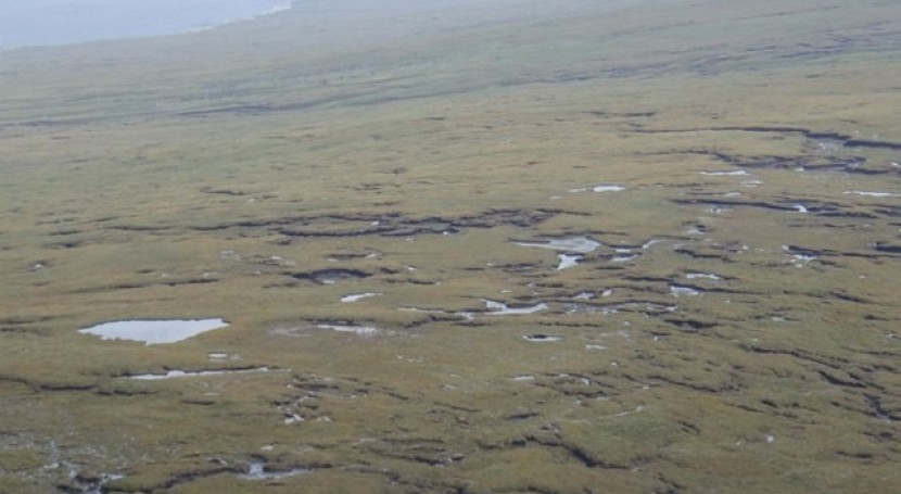 £22 million in funding to restore Scotland's iconic peatlands