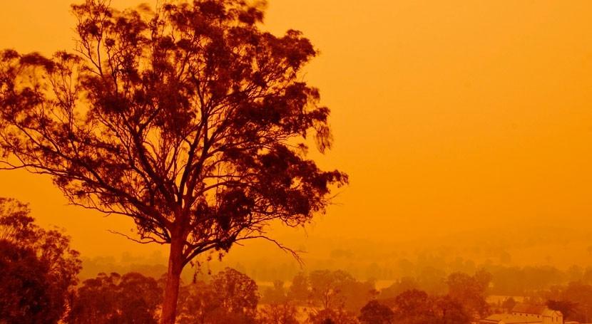 Drinking water under threat: water contamination risks this bushfire season