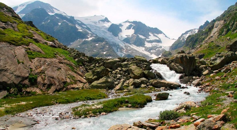 Mountain vegetation dries out Alpine water fluxes