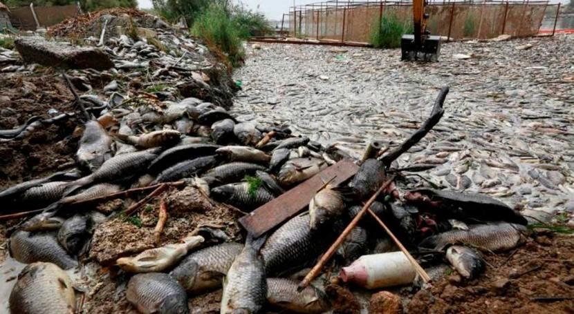 Shrinking water supplies threaten to put fragile Iraq 'on the edge'