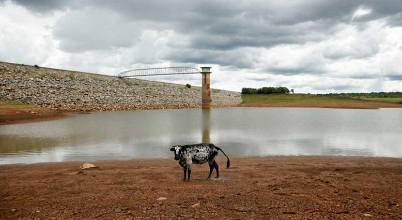 Zimbabwe's drought-hit Bulawayo limits tap water to just day week