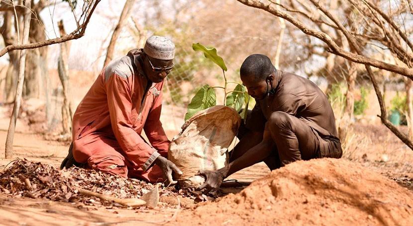 African leaders warn COVID-19 crisis harming climate adaptation push