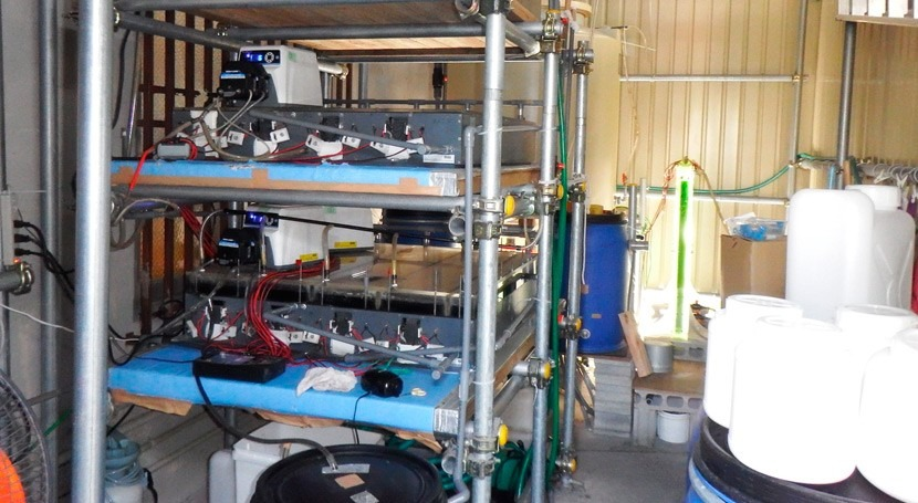 BioAlchemy: Treating Wastewater at the point of production