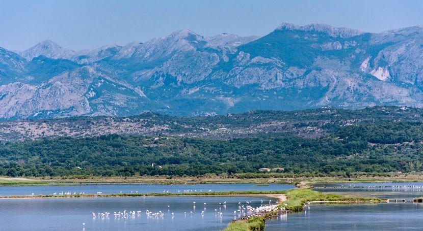 Montenegro names Ulcinj Salina as Ramsar Site