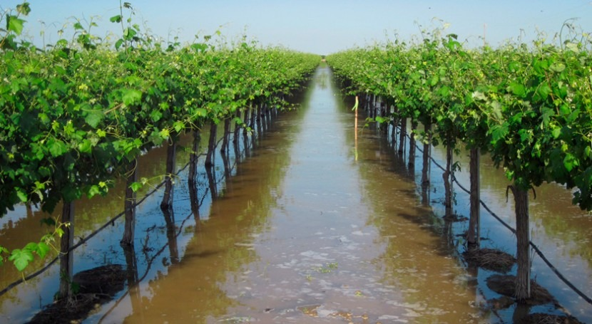 Using floodwaters to weather droughts