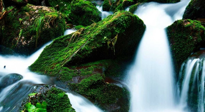 Boosting the global economy preserving water and the climate