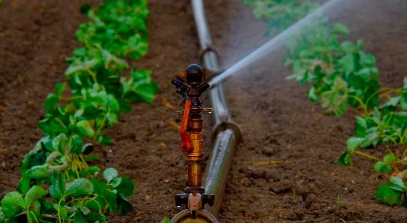 EU agrees on minimum requirements for water reuse in agriculture