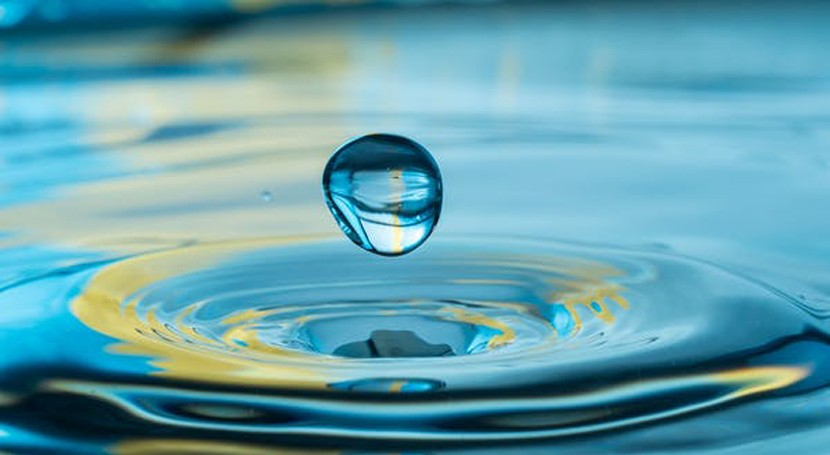 If we want to improve NZ's freshwater quality, we need to improve the quality of our democracy