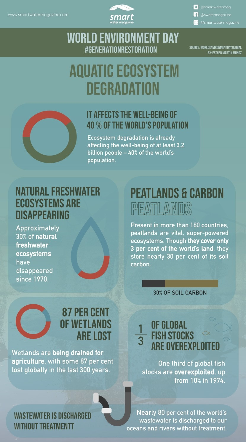 Degradation of aquatic ecosystems: Infographic for World Environment Day 2021