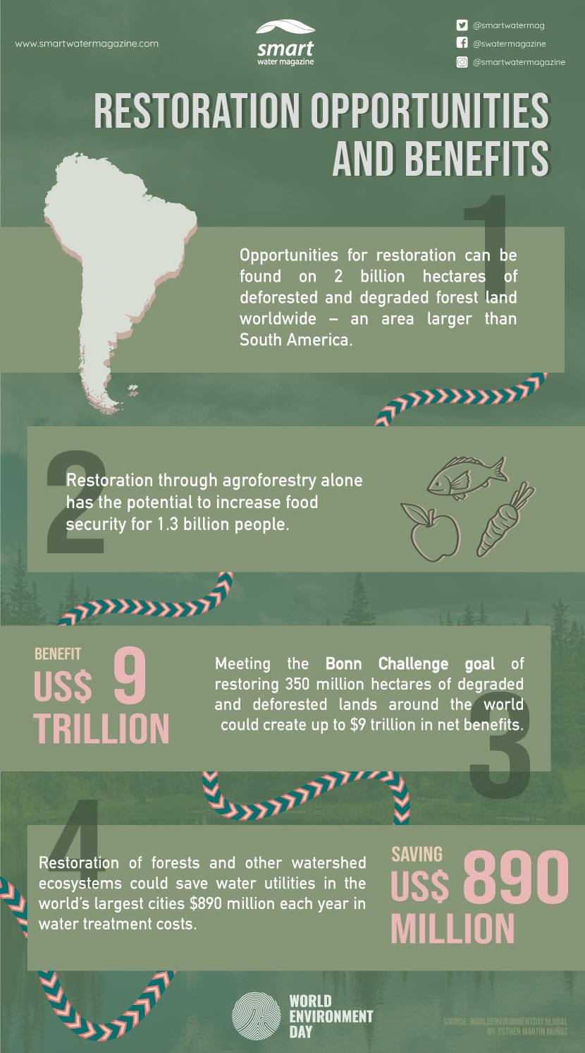 Infographic World Environment Day 2021: Opportunities and benefits of restoration