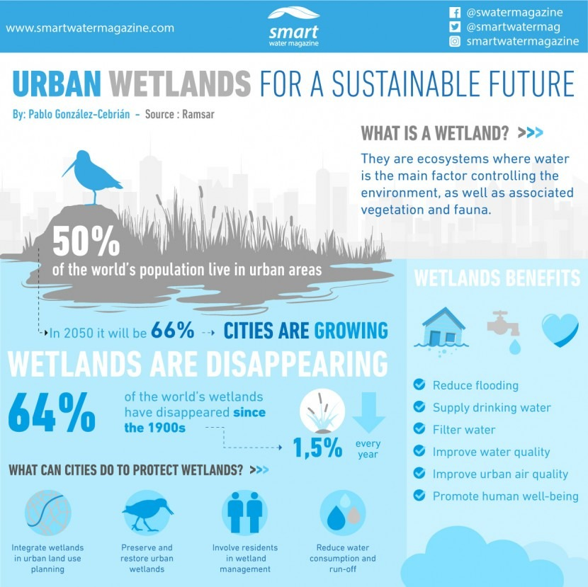 Urban wetlands for sustainable future